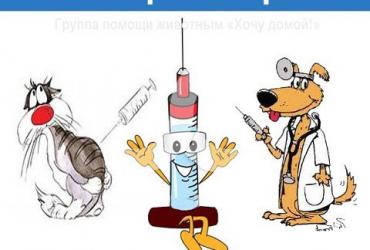 Вакцинация. Что это?